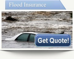 Flood insurance Tampa - American Landmark Insurance